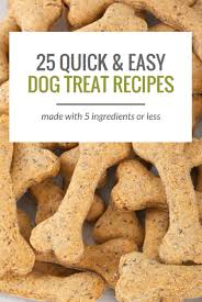 25 simple dog treat recipes made with