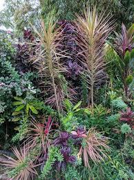 princeville botanical garden