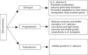 host sensing by pathogenic fungi