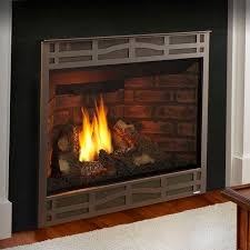 gas fireplace traditional closed