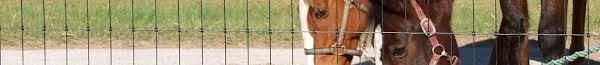 Bekaert Non Climb Fencing Horse Sheep And Goat Fencing