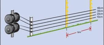 Controlling Rabbits With An Electric Fence