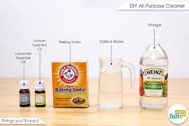 homemade all purpose cleaner for all