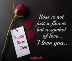 happy rose day quotes wishes rose day images messages