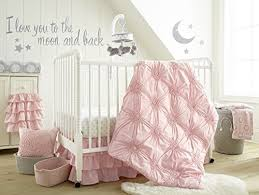 Levtex Baby Willow Crib Bed Set Baby Nursery Set Pink Soft Rosette Pintuck 5 Piece Set Includes Quilt Fitted Sheet Diaper Stacker Wall Decal Crib Skirt Dust Ruffle News Story