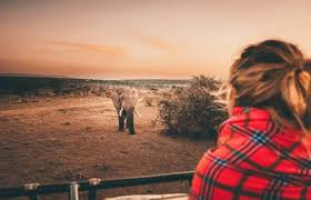 the ultimate women s safari clothing guide