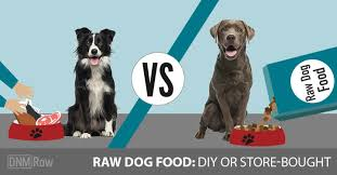 raw dog food homemade vs bought