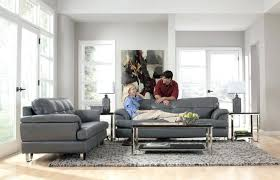 area rug to match grey couch dark gray