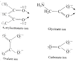 What is false about glycinato ion ?A Its formula is H2N - CH2 - C