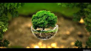 nature wallpapers top free nature