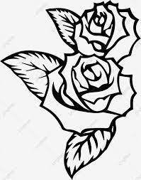 مرسومة باليد نمط روز روز الزهور زهور خط Png والمتجهات للتحميل مجانا