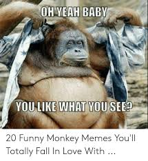 25 best memes about funny monkey