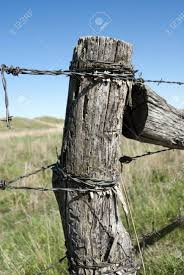 Old Wooden Fence Post Stock Photo Picture And Royalty Free Image Image 9736032