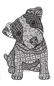 Jack Russell Terrier Met Afbeeldingen Kleurboek Kleurplaten