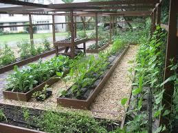 design for organic vegetable gardens