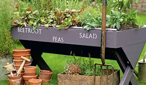 budget garden ideas 27 design