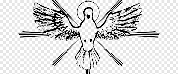 bird line art holy spirit catechism
