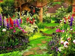 flower garden garden