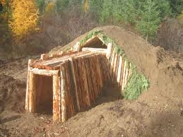diy survival earth shelter dwelling