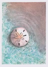 Sand Dollar Painting by Hilda Wagner