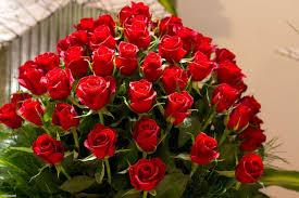 بوكيه ورد كبير أجمل الورود كيوت