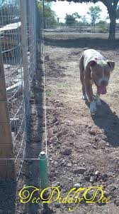 Diy Electric Fence Hot Wire For Animals Part 1 Teediddlydee Wire Fence Electric Fence Dog Fence