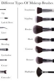 diffe types of makeup brushes
