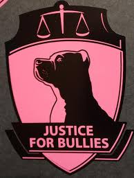 Car Decal Justice For Bullies