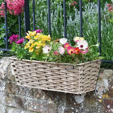 19in Bari Faux Rattan Planter Sand Hanging Baskets Polhill Garden Centre