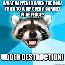 What Happened When The Cow Tried To Jump Over A Barbed Wire Fence Udder Destruction Lame Pun Coon Quickmeme