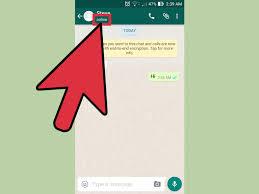 Come Sapere se Qualcuno è Online su WhatsApp - wikiHow