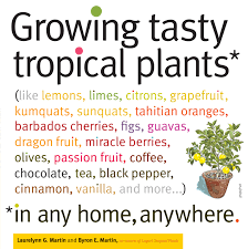 Growing Tasty Tropical Plants in Any Home, Anywhere - Workman ...