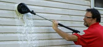 8 ways to clean moldy vinyl siding