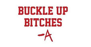 Pretty Little Liars Buckle Up Bitches Signature A 6 Red Car Truck Vinyl Decal Art Wall Sticker Usa Awesome Cute Mystery Fun Tv Shows Hanna Aria Spencer Emily Toby Caleb Buy