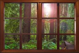 This Would Look Good In My Office With No Windows Wall Decal Forest Window Viewlarge 24x36california By Catsmeowart 25 0 Faux Window Wall Murals Fake Window