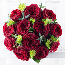 Red Garden Rose & Red Wine