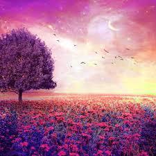 dreamy nature flower garden ipad air