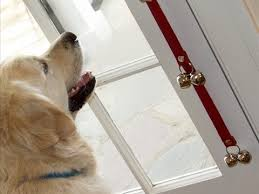 poochiebells dog training bells you