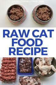 raw cat food recipe keto kitties with