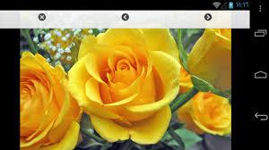 صور ورد جميلة For Android Apk Download