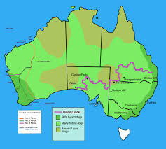 Route Of The Dingo Fence And Rabbit Proof Fences Of Australia 1800 X 1616 Mapporn