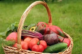 vegetable gardening in austin texas