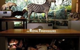 4 the royal tenenbaums hd wallpapers
