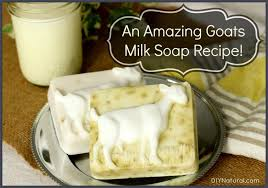 goats milk soap recipe also works with