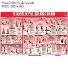 gym workout exercises pdf