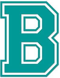 Amazon Com Applicable Pun Varsity Letter B Vinyl Decal Outdoor Use On Cars Atv Boats Windows More Turquoise 8 Inches Tall Automotive