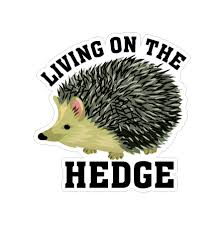Living On The Hedge Hedgehog Vinyl Car Sticker Doggy Style Gifts