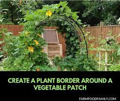 29 Edging Plants For Kitchen Gardens Can Inspired Gardeners