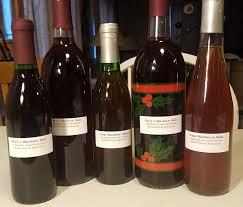 organic fruit wine making kieser organics