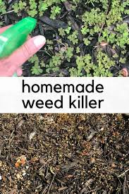 homemade weed easy natural